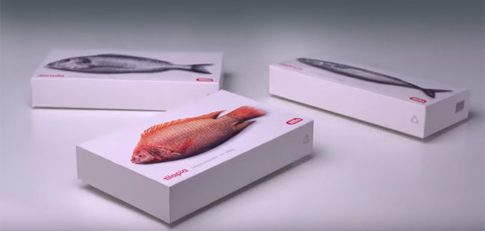 packagings-animes-poissons-1