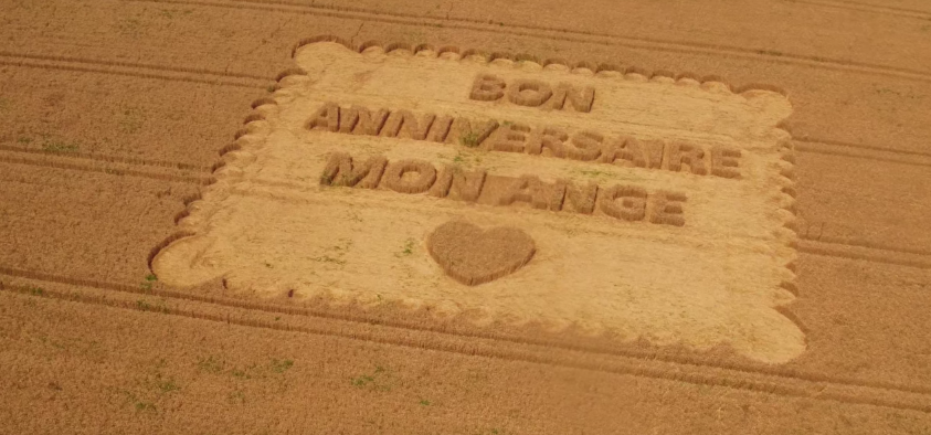 crop-circle-anniversaire-lu-5