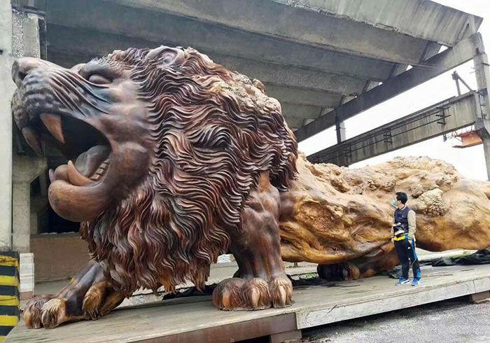 un lion de 15 m tres de long sculpt dans un seul tronc d 39 arbre. Black Bedroom Furniture Sets. Home Design Ideas