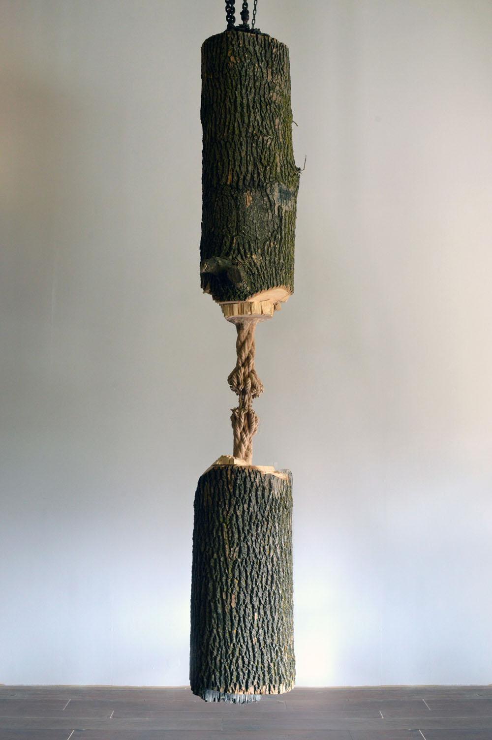 Ce tronc semble suspendu par une corde mais en réalité c'est du bois # Poids D Un Stere De Bois
