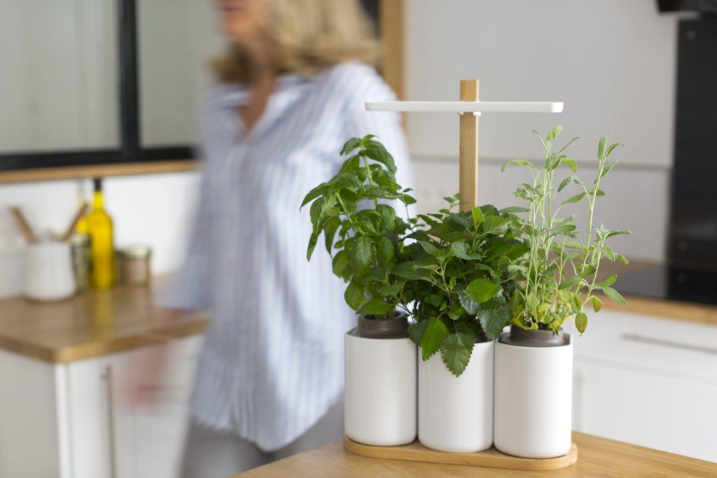 marre de tuer votre basilic ce potager innovant va changer votre vie. Black Bedroom Furniture Sets. Home Design Ideas