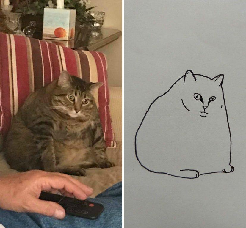 Minimal Cat Art : les chats minimalistes dessinés sur Reddit