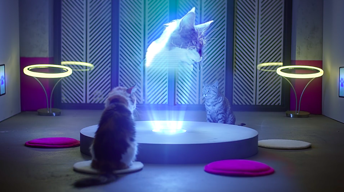 Whiskas tacle Apple avec une keynote destinée aux chats