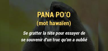 Cette enseignante liste des mots étrangers impossibles à traduire