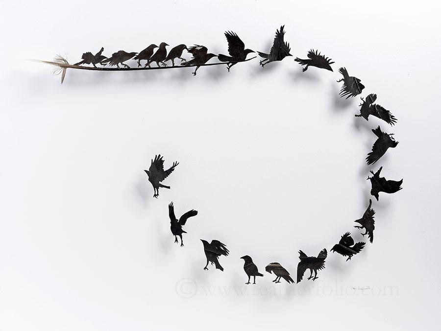 Chris Maynard réalise d'étonnantes mises en scène en sculptant des plumes d'oiseaux