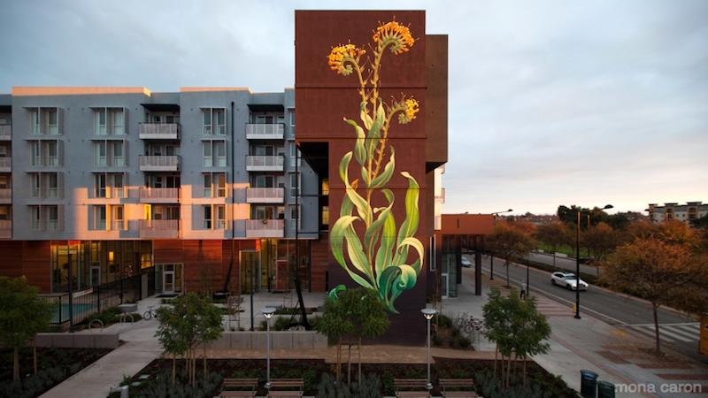 Mona Caron peint des plantes géantes sur les immeubles dans le monde entier