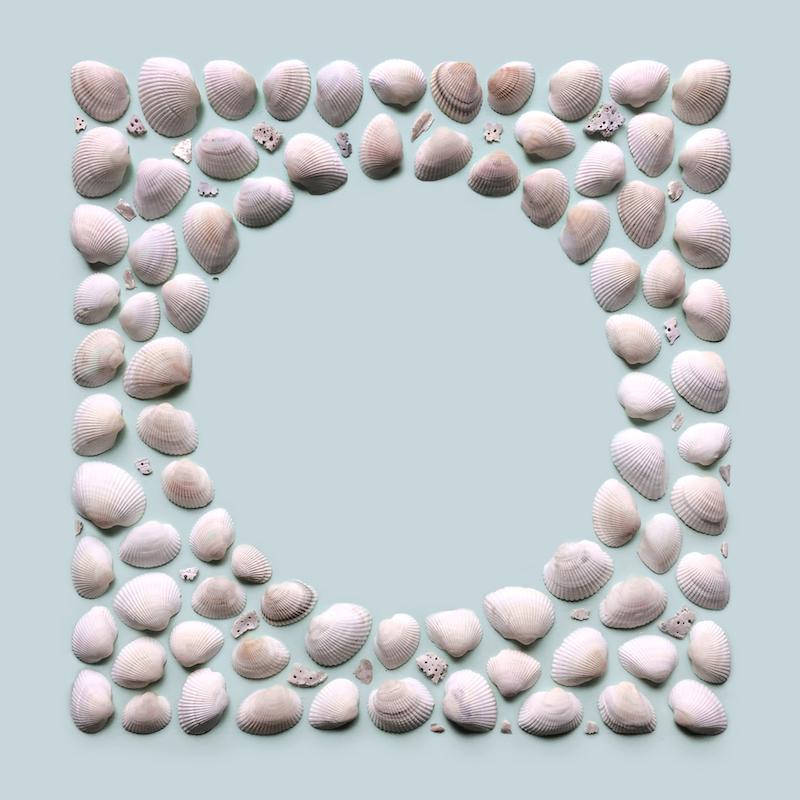 Kristen Meyer organise les objets qu'il trouve avec une géométrie hallucinante