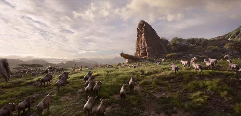 """Disney dévoile la bande d'annonce du film live """"Le Roi Lion"""" ! By  Thomas R.  Disney-film-roi-lion-2"""