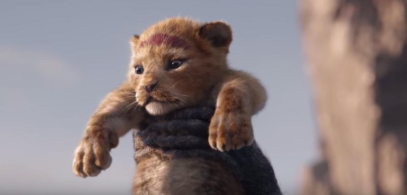 """Disney dévoile la bande d'annonce du film live """"Le Roi Lion"""" ! By  Thomas R.  Disney-film-roi-lion-6"""