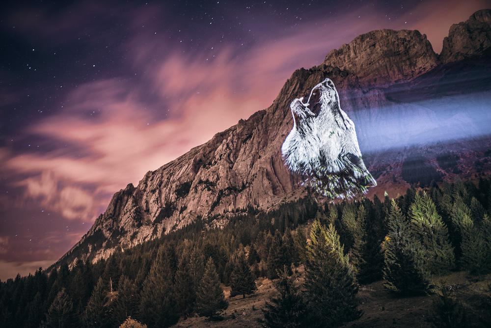 Cet artiste projette des animaux sur des falaises pour sensibiliser à la sauvegarde du monde sauvage ! By Mélanie D.  Julien-nonnon-animaux-lumiere-projection-extinction-1