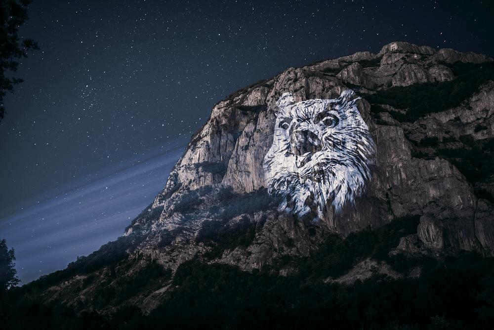 Cet artiste projette des animaux sur des falaises pour sensibiliser à la sauvegarde du monde sauvage ! By Mélanie D.  Julien-nonnon-animaux-lumiere-projection-extinction-10