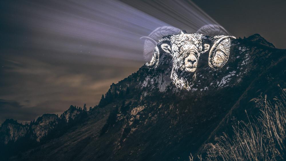 Cet artiste projette des animaux sur des falaises pour sensibiliser à la sauvegarde du monde sauvage ! By Mélanie D.  Julien-nonnon-animaux-lumiere-projection-extinction-4