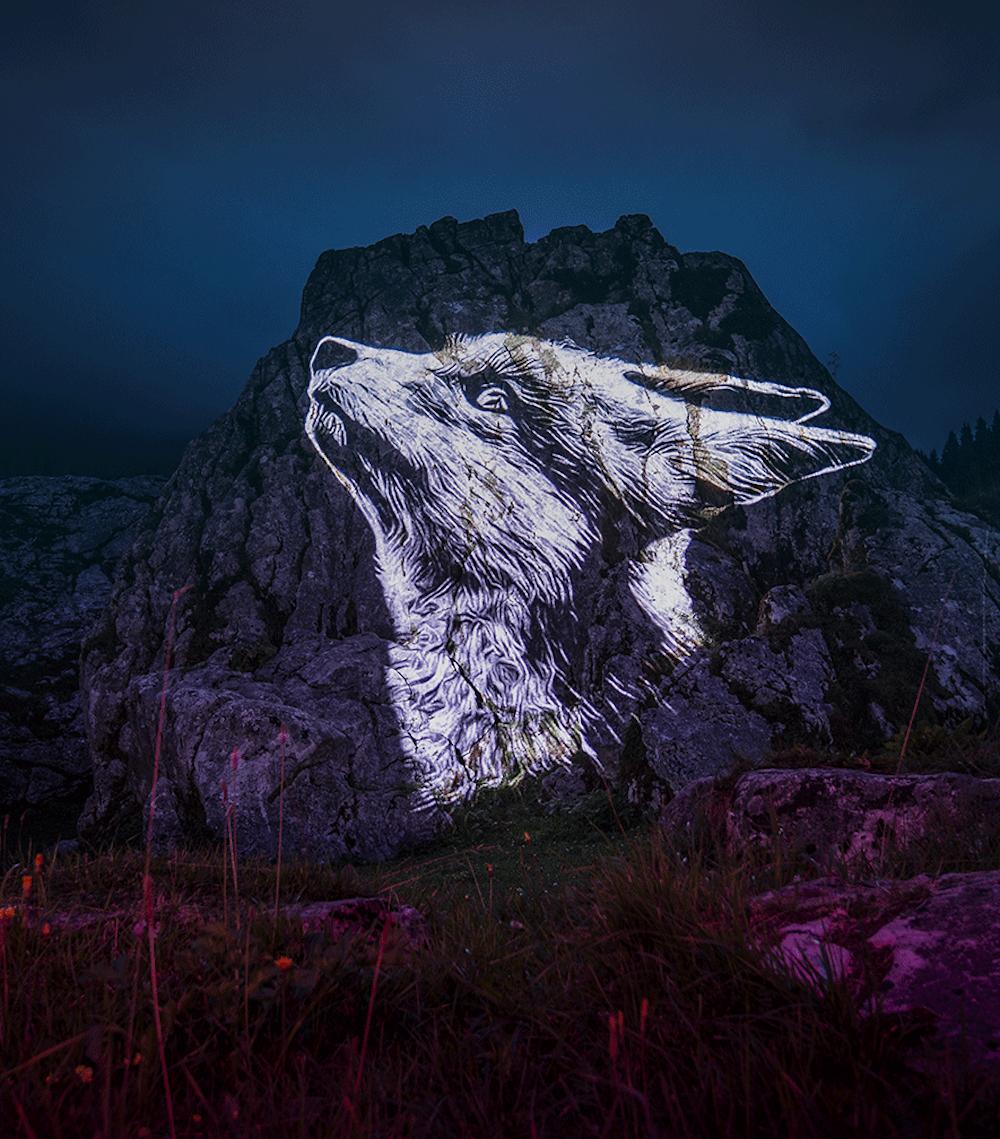 Cet artiste projette des animaux sur des falaises pour sensibiliser à la sauvegarde du monde sauvage ! By Mélanie D.  Julien-nonnon-animaux-lumiere-projection-extinction-5