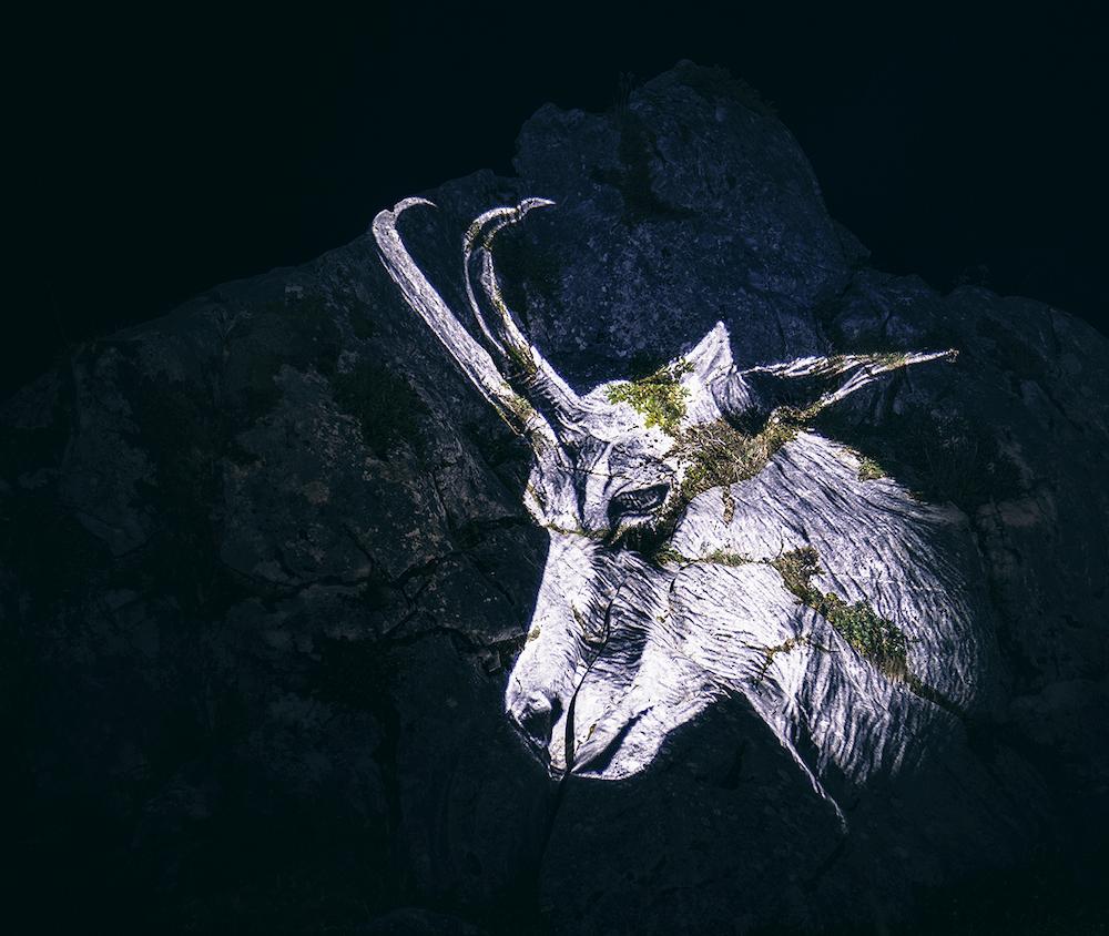Cet artiste projette des animaux sur des falaises pour sensibiliser à la sauvegarde du monde sauvage ! By Mélanie D.  Julien-nonnon-animaux-lumiere-projection-extinction-7