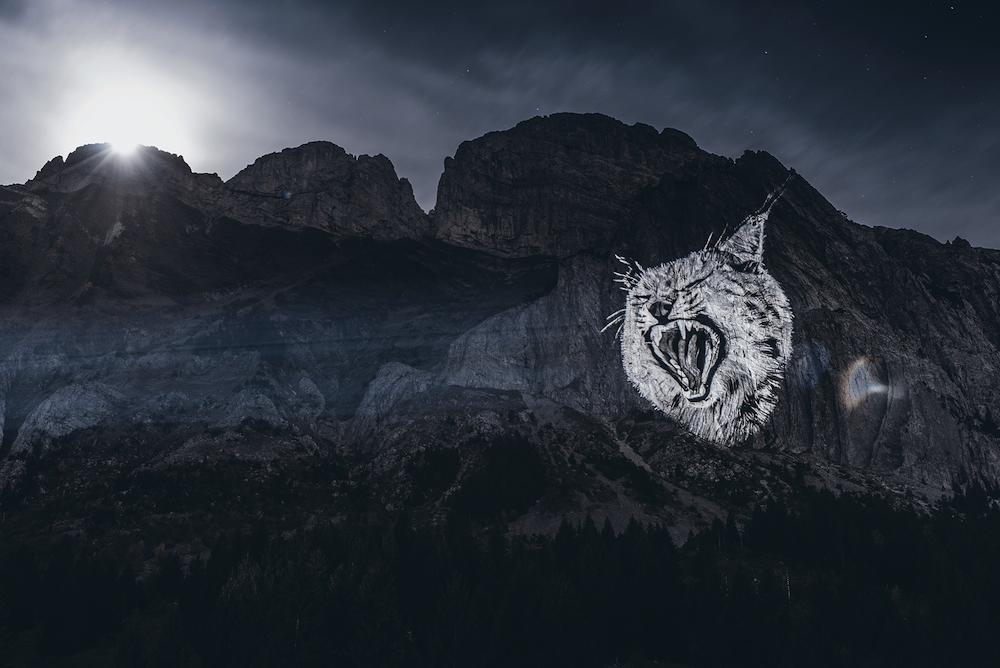 Cet artiste projette des animaux sur des falaises pour sensibiliser à la sauvegarde du monde sauvage ! By Mélanie D.  Julien-nonnon-animaux-lumiere-projection-extinction-8