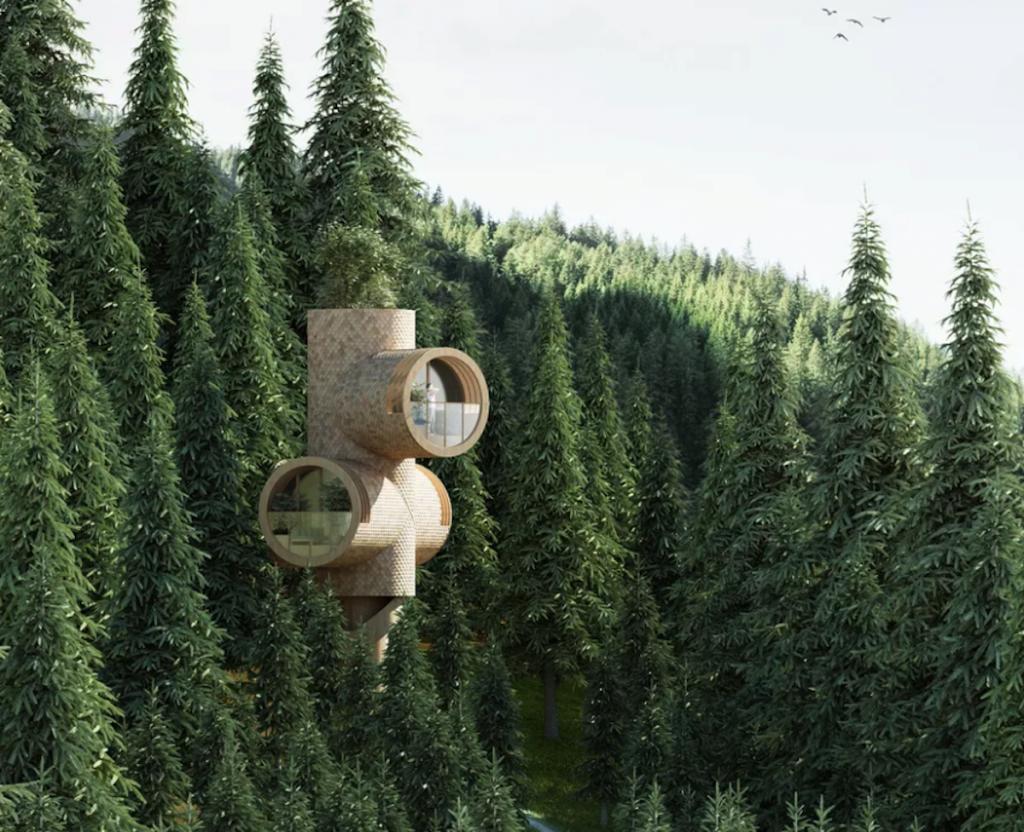 Studio Precht cabanes en bois