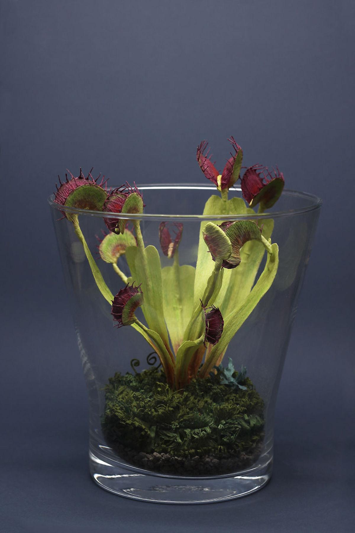 Tina Kraus plantes réalistes en papier