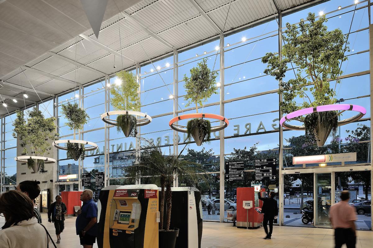 Gare Angers Arbres Flottants