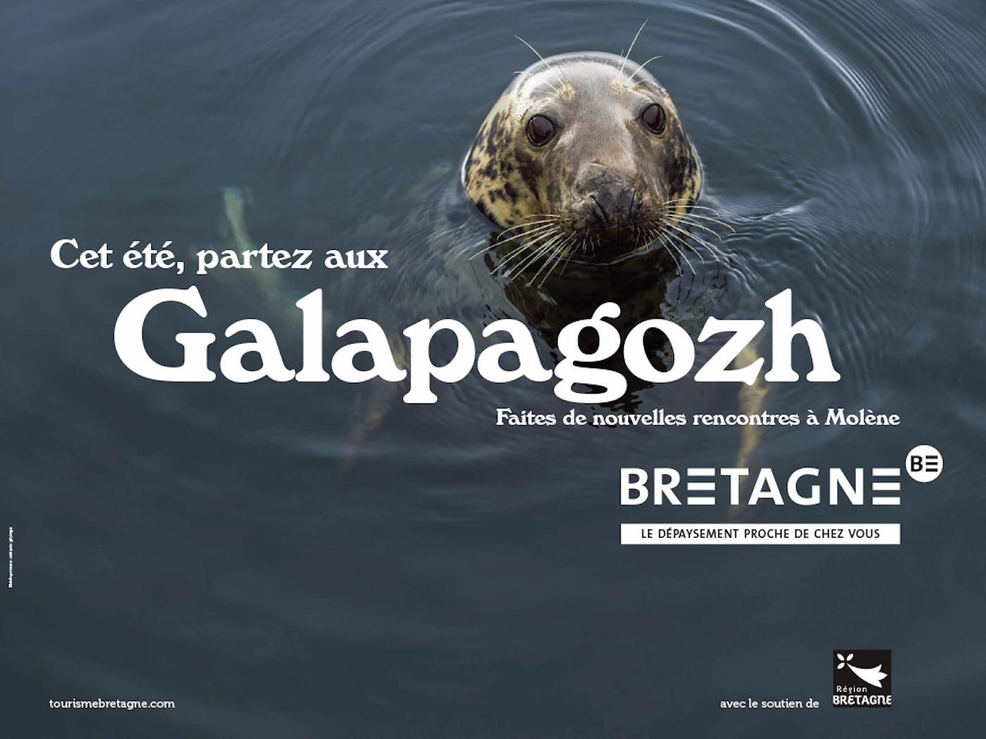 Galapagozh : la campagne de pub pour le tourisme en Bretagne