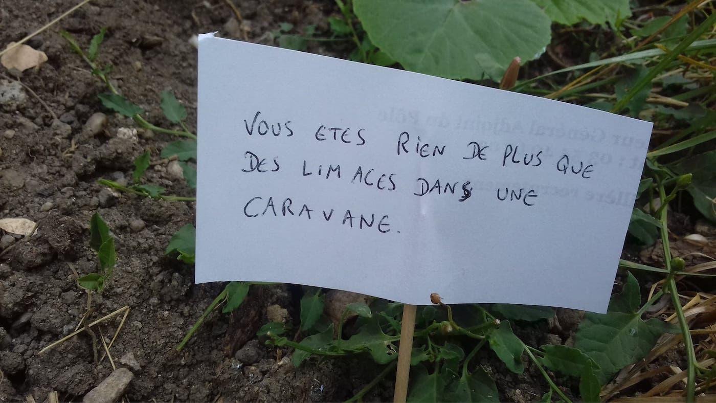 Bertrand Hance a installé des panneaux menaçants pour vexer et faire fuir les escargots qui mangent ses salades