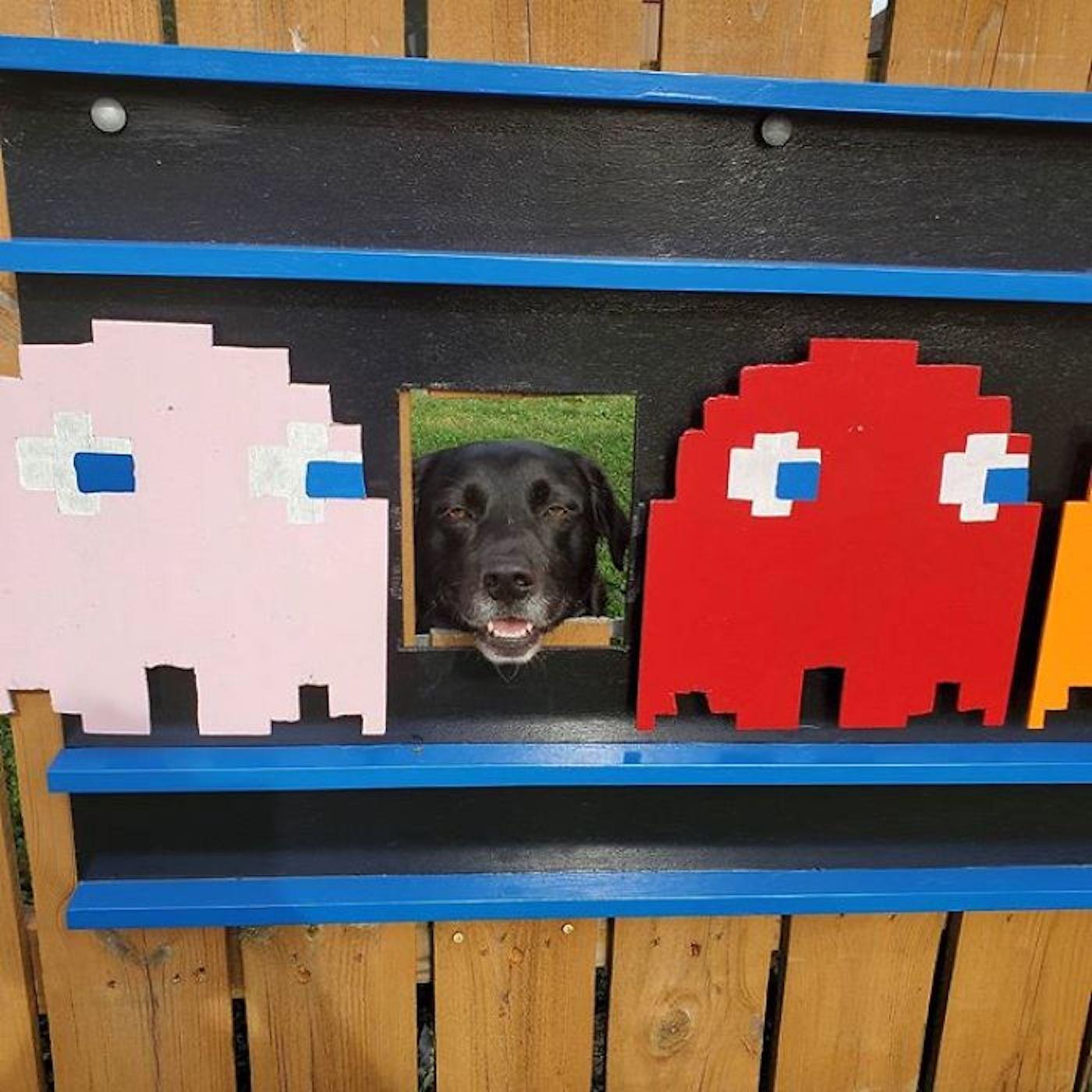 Pour amuser la voisinage, cette famille décore le trou de sa clôture avec créativité