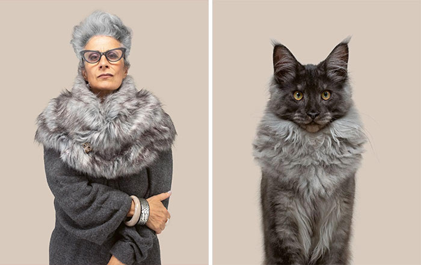 Le photographe Gerrard Gethings fait ressortir les ressemblances entre les chats et leurs maîtres