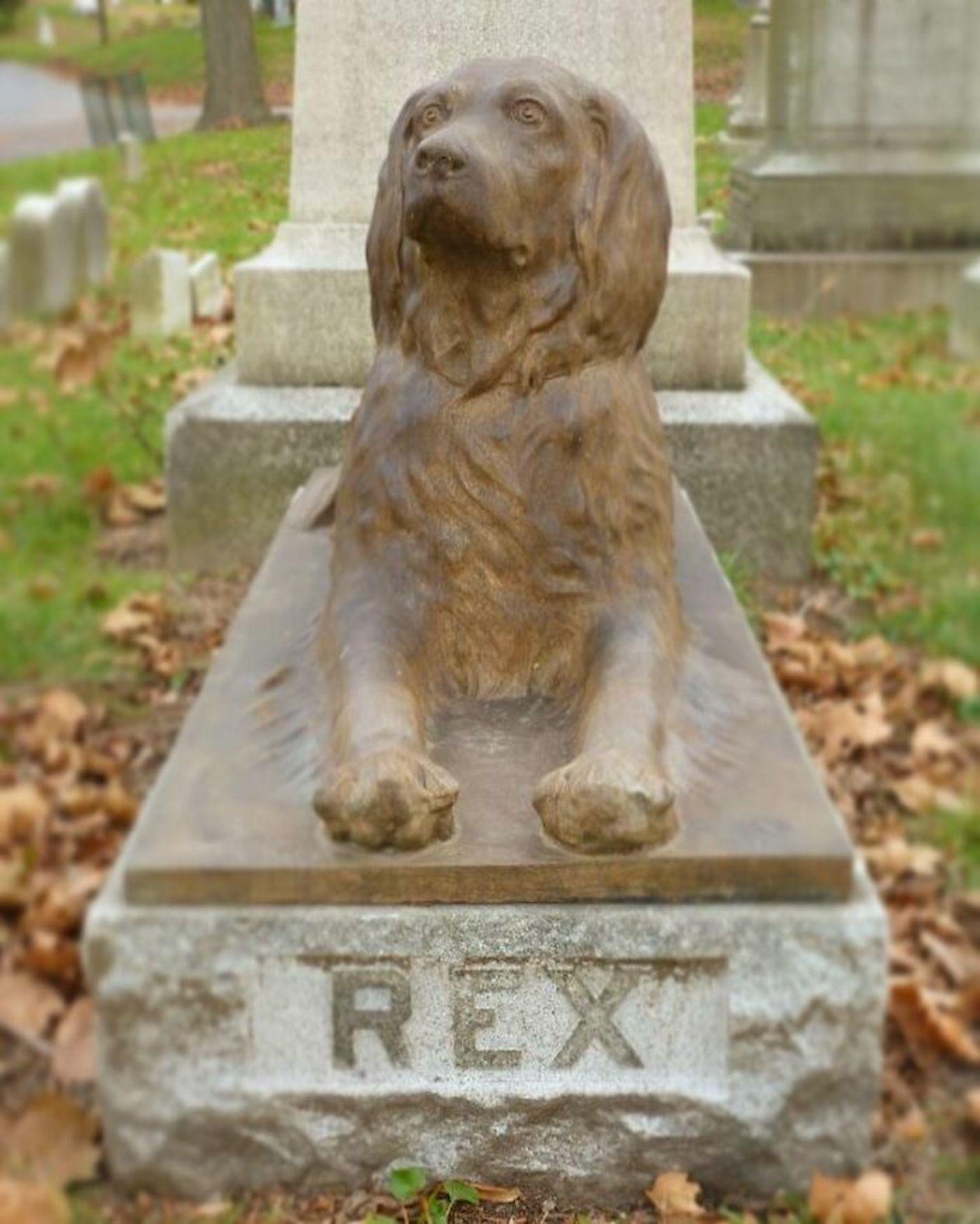 Dans ce cimetière, les visiteurs déposent un bâton sur la tombe centenaire d'un chien