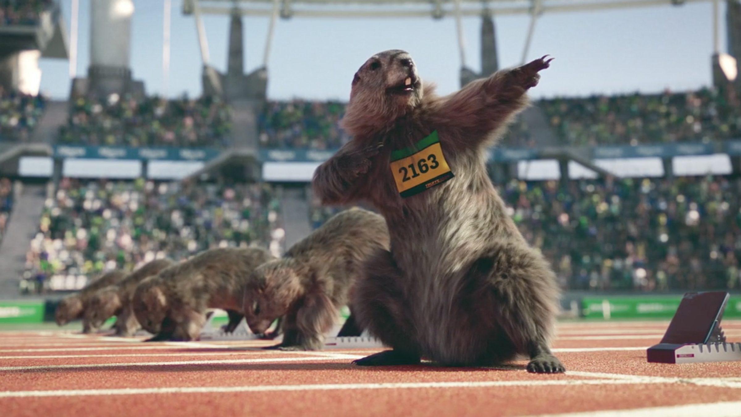 Les marmottes de France 3 se mettent au sport dans 10 spots géniaux