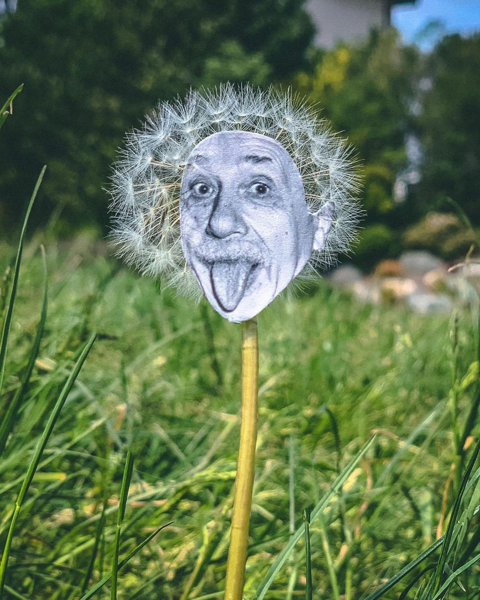 Rudy Willingham intègre des personnages dans le décor avec une folle créativité