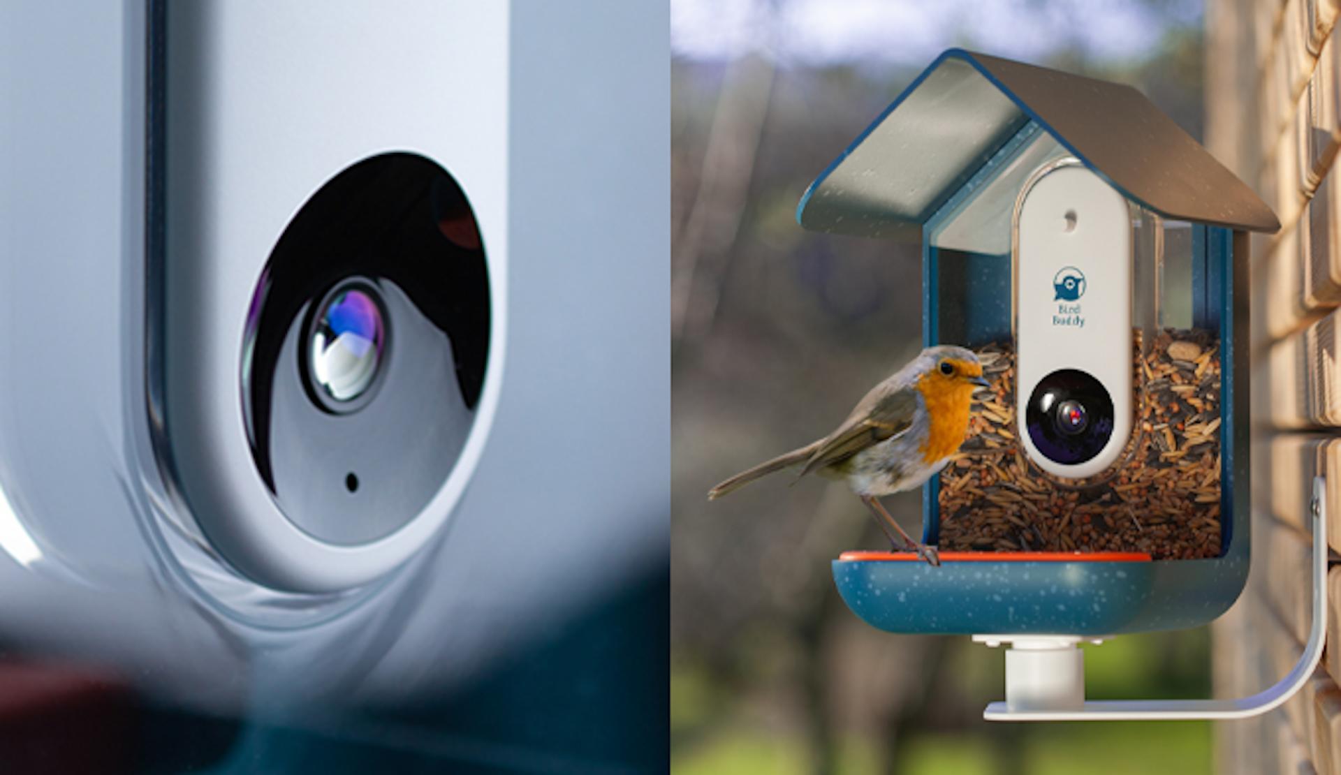 Bird Buddy : la mangeoire qui photographie et identifie les oiseaux en temps réel