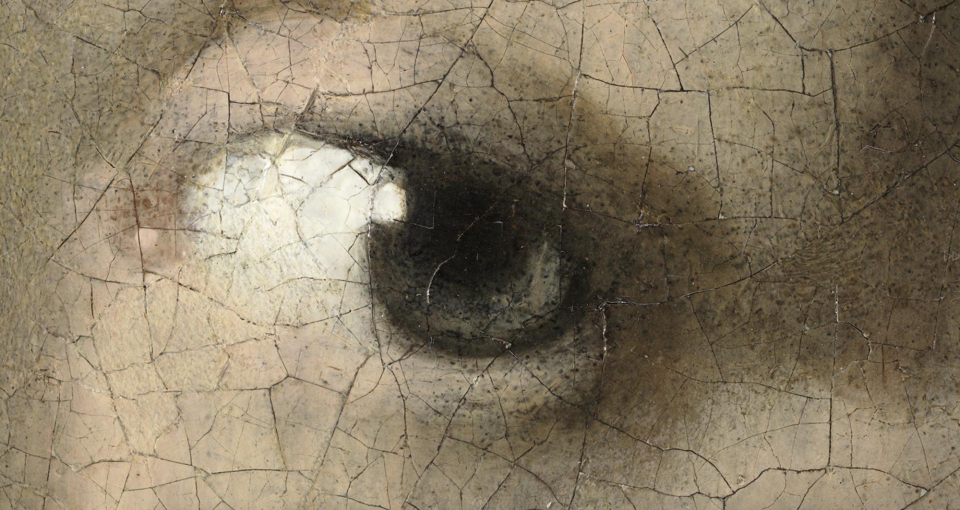 """Explorez """"La Jeune Fille à la perle"""" avec cette photo de 10 milliards de pixels ! (vidéo) Par Maxime Delmas La-jeune-fille-a-la-perle-10-milliards-pixels-1-2-1920x1020"""