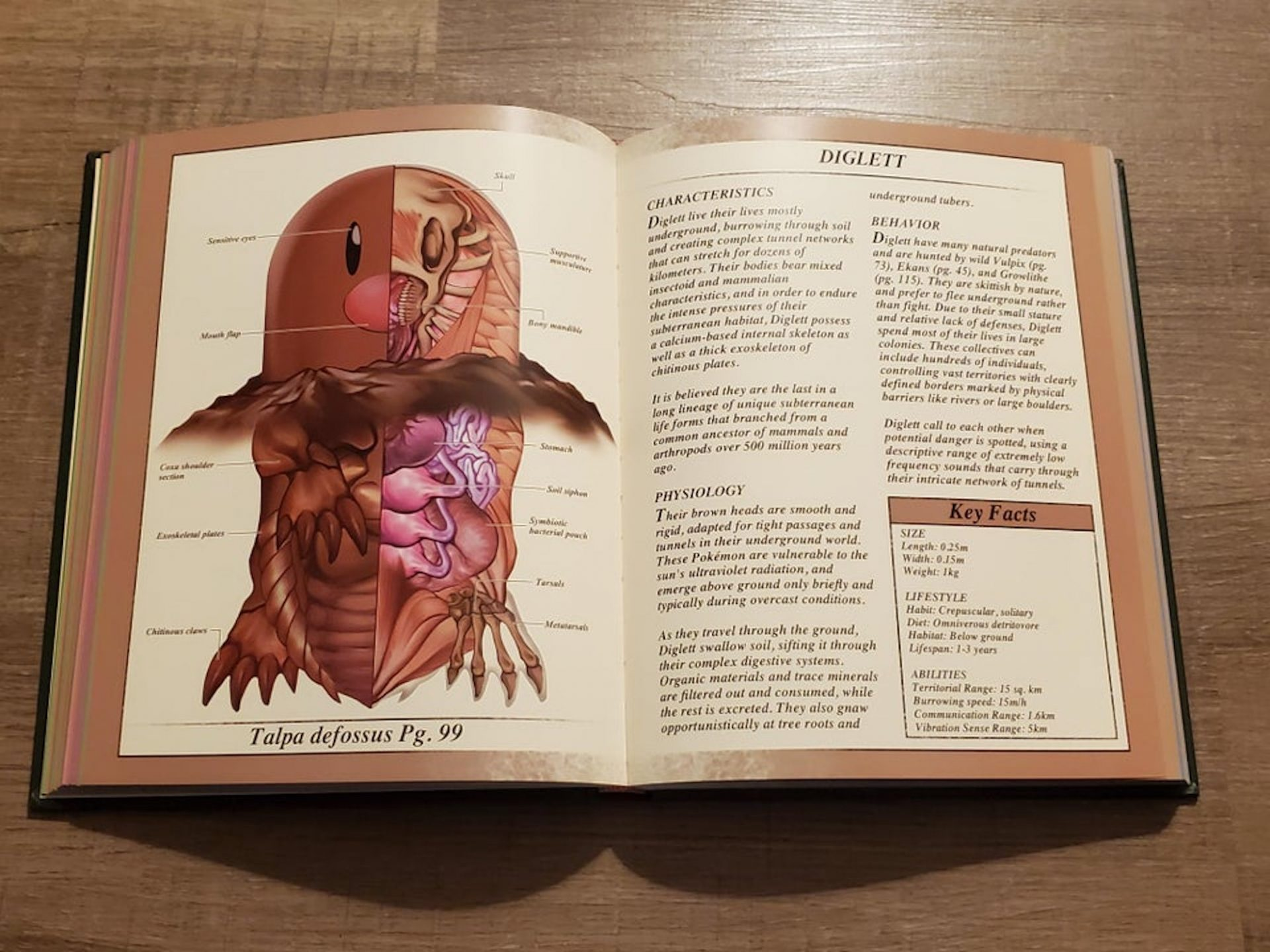PokéNatomy : un livre dédié à l'anatomie des Pokémon