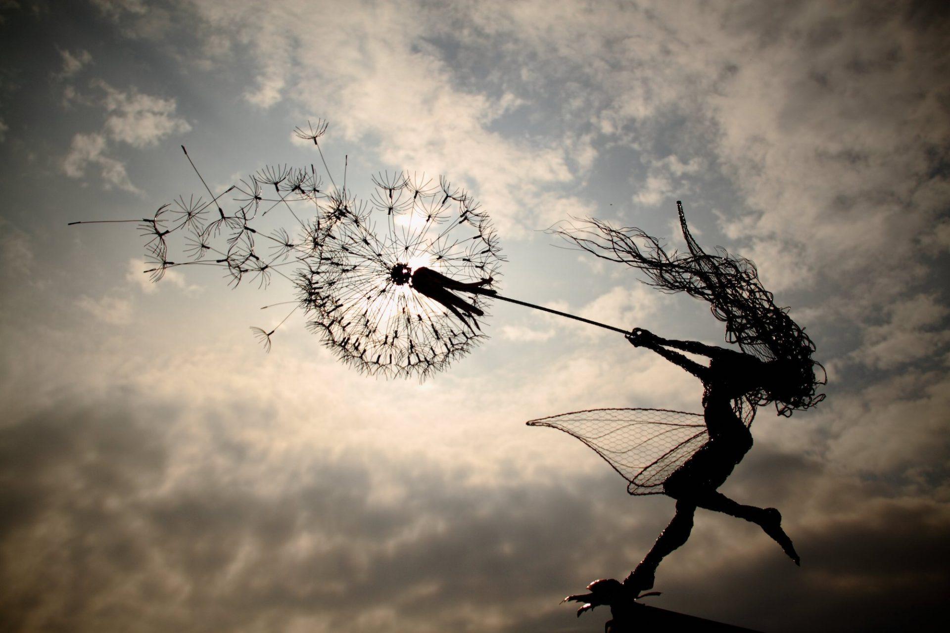 Robin Wight sculpte d'incroyables fées aux pissenlits avec des fils de fer