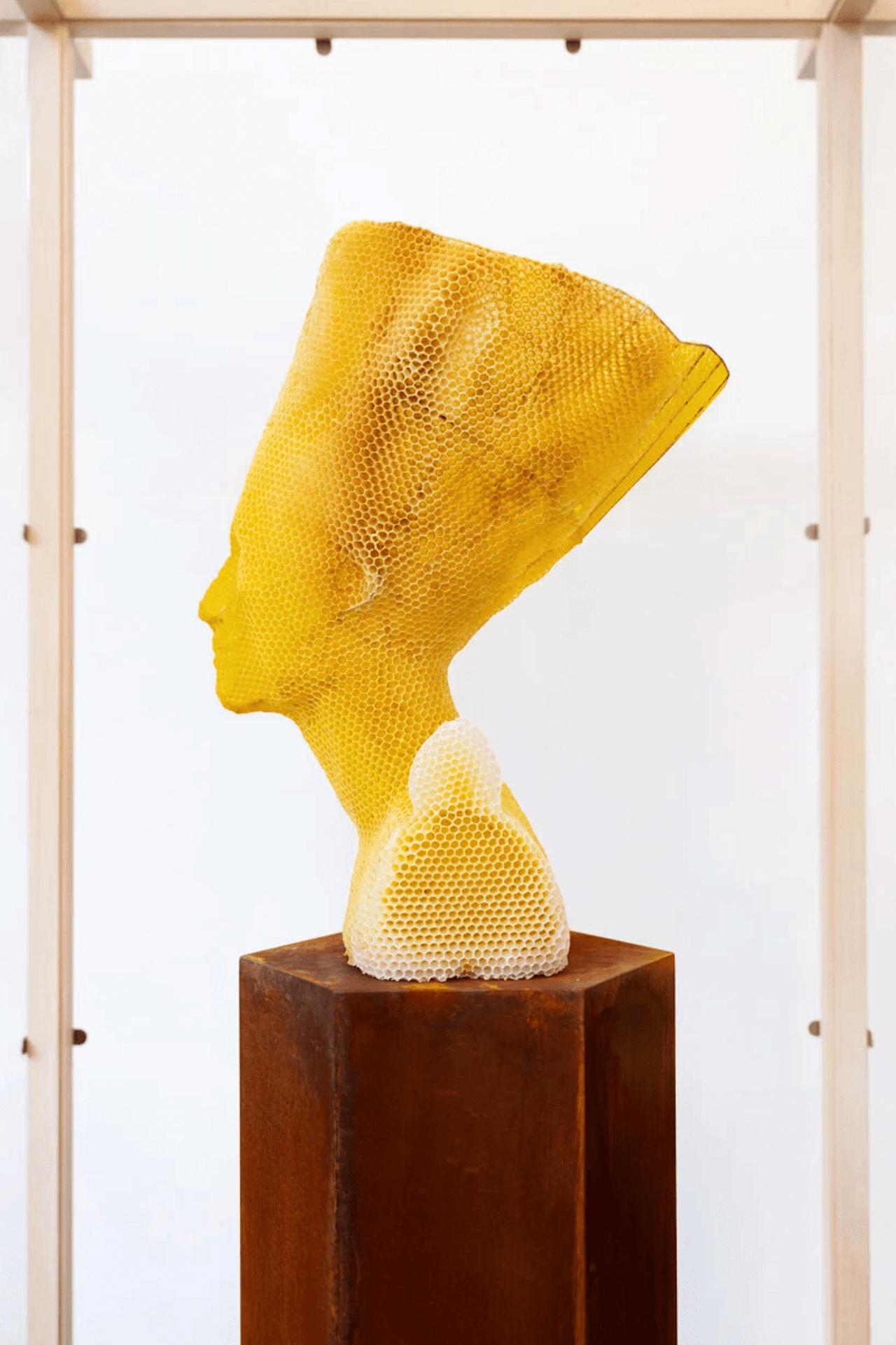 Le buste de Néfertiti sculpté en cire d'abeille par Tomáš Libertíny