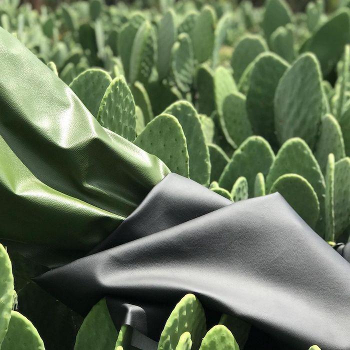 Un cuir végétal conçu avec du cactus
