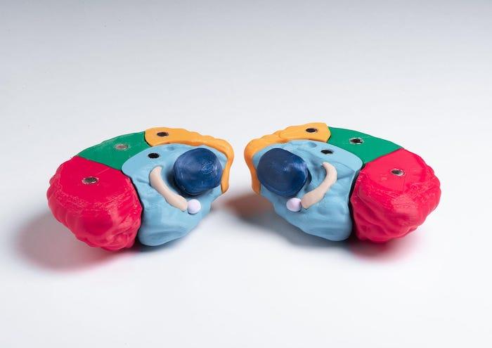 Brain : un puzzle éducatif en 3D pour expliquer l'épilepsie aux enfants par Andréa Harcourt