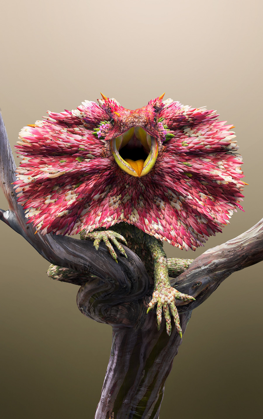 Avec des fleurs et des feuilles, l'artiste digital Josh Dykgraaf recrée des animaux